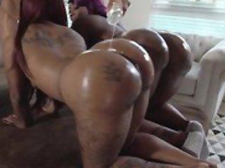 Three chubby ebonies with well-known asses succeed in oiled fro and fucked in triune